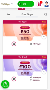 polo bingo free online bingo games screenshot