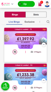 Tip Top Bingo Bingo games screenshot