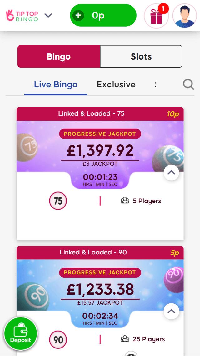 Tip Top Bingo Bingo games screenshot