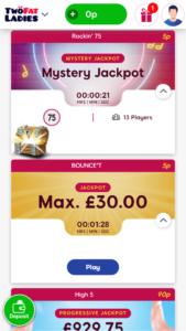 Two fat ladies online bingo screenshot