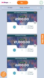 Bid bingo daily jackpot bingo games screenshot