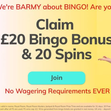 New Bingo Site Bingo Barmy Launched