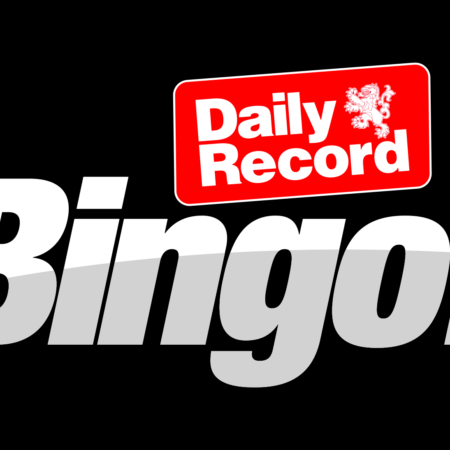 Say Hello To Reach Gaming's New Bingo Site: Daily Record Bingo